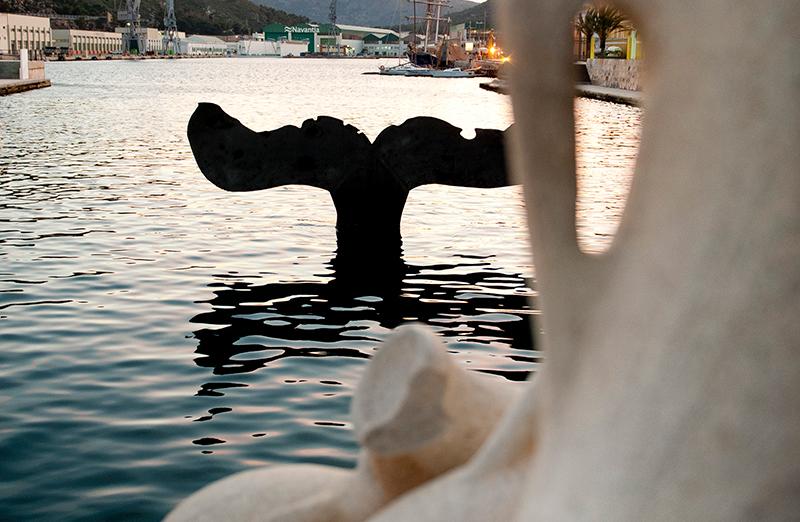 Die Walflosse